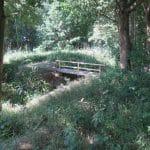 domki rusinowo